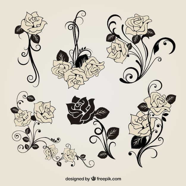Cute roses decoration Free Vector