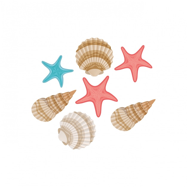 Cute seashells on the sea in white Free Vector