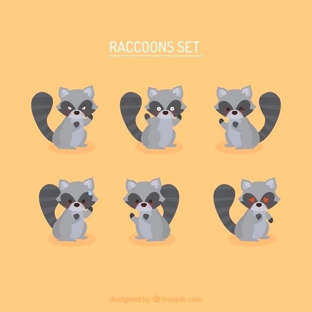 Cute set of cartoon raccoons