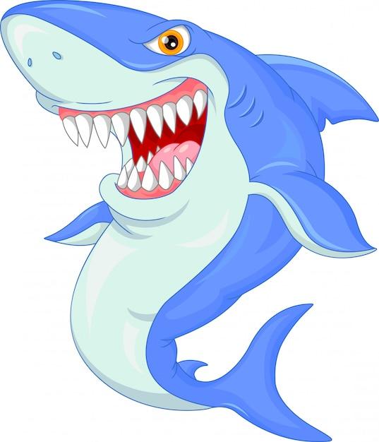 Cute shark cartoon Premium Vector