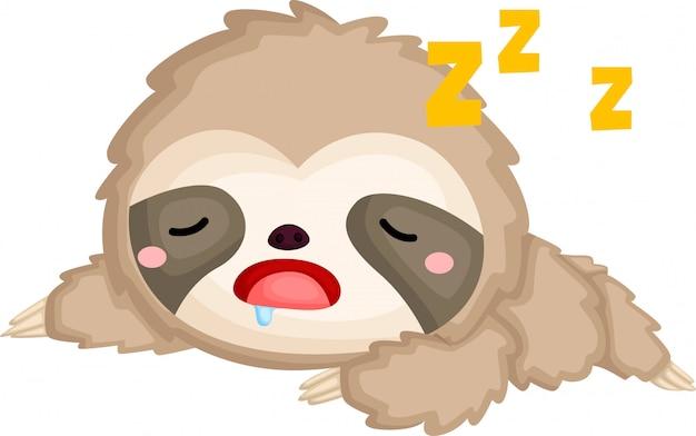A di un bradipo addormentato carino Vettore gratuito