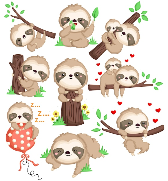 Cute sloth in many position Premium Vector