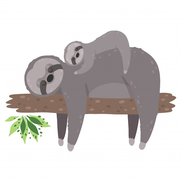 Cute Sloth Sleeping With Baby Isolated On White Background Mother Sloth With Her Child Premium Vector