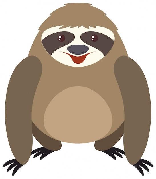 Cute sloth with round body Free Vector