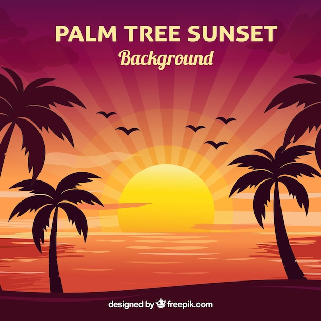 Cute sunset background Free Vector