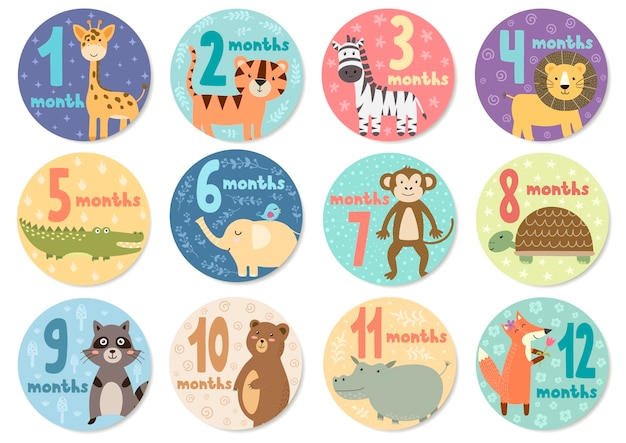 Cute twelve months stickers with animals for babies. Premium Vector