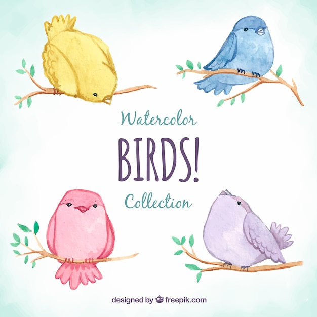 Cute watercolor bird collection Free Vector