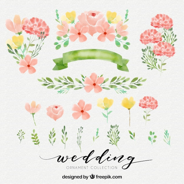 Cute watercolor elements Free Vector