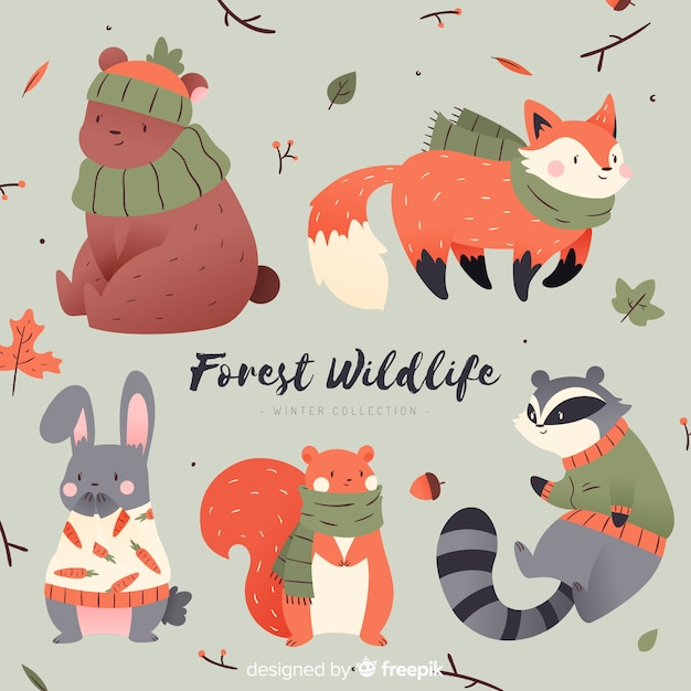 Cute winter animal collection Free Vector