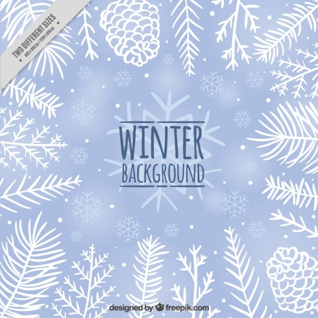 cute winter background with pine cones and hand drawn leaves vector