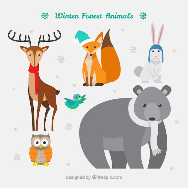 Cute winter forest animals pack