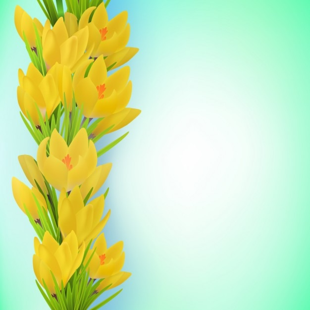 Cute yellow flower background