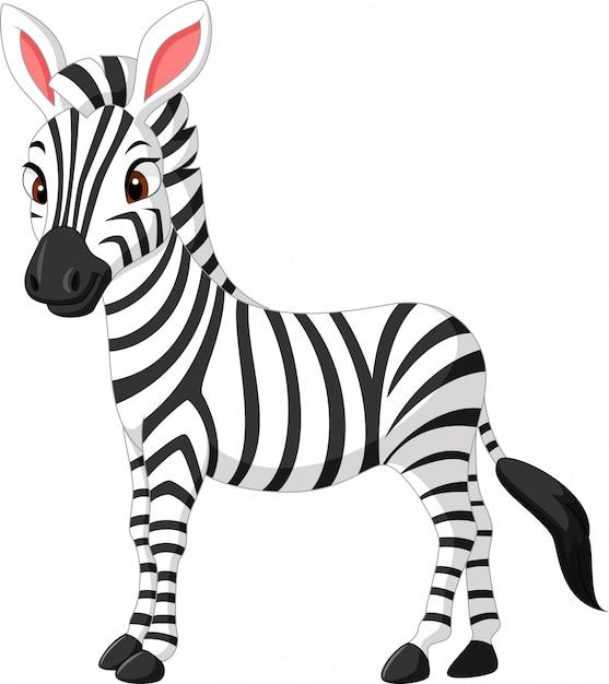 Cute zebra cartoon | Premium Vector
