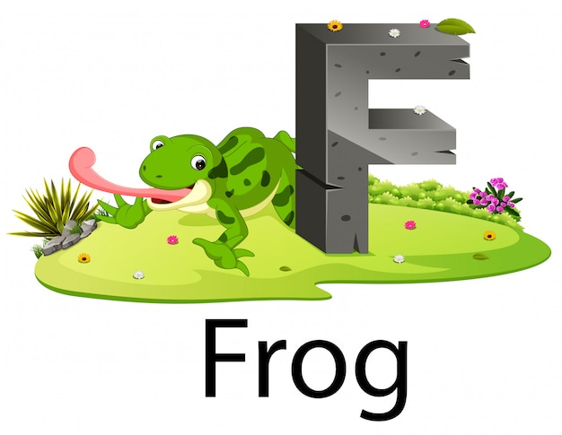 Cute zoo animal alphabet f for frog with real animal Premium Vector