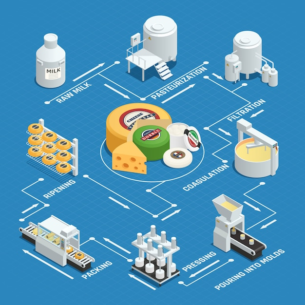 Dairy factory cheese production process Free Vector