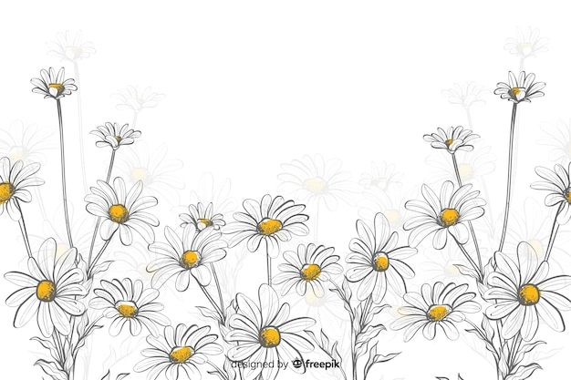 Daisies decorative background watercolor style Free Vector
