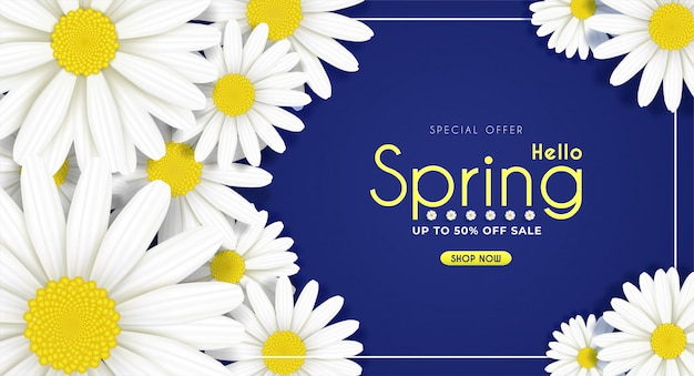 Daisy flowers bloom in the seasonal spring.and for sale shopping discount promotion.and background. Premium Vector