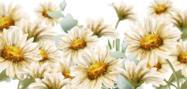 Daisy flowers watercolor style Premium Vector