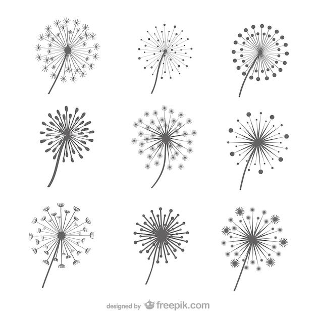 dandelions collection vector free download. Black Bedroom Furniture Sets. Home Design Ideas