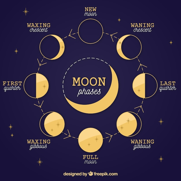 Dark blue background of moon phases and stars Free Vector