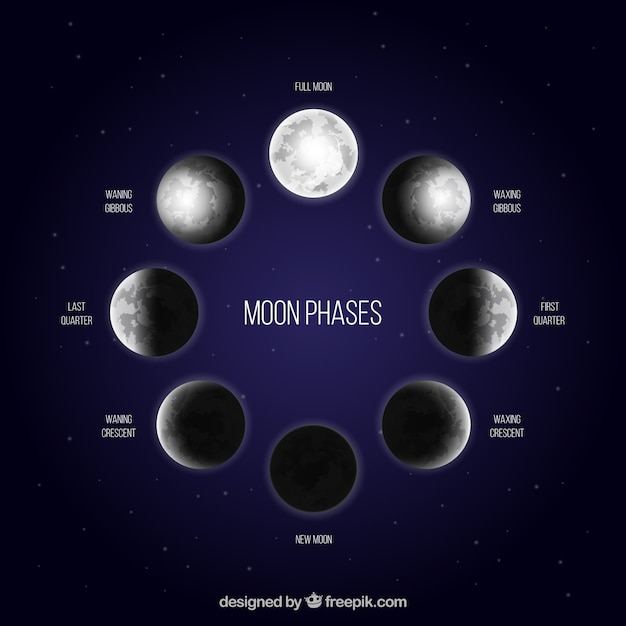 Dark blue background with moon phases in realistic design Free Vector