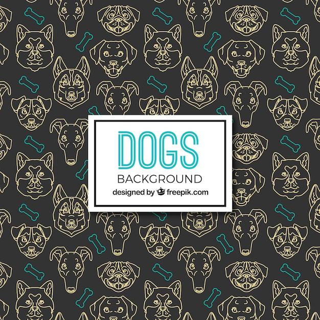 Dark dog background