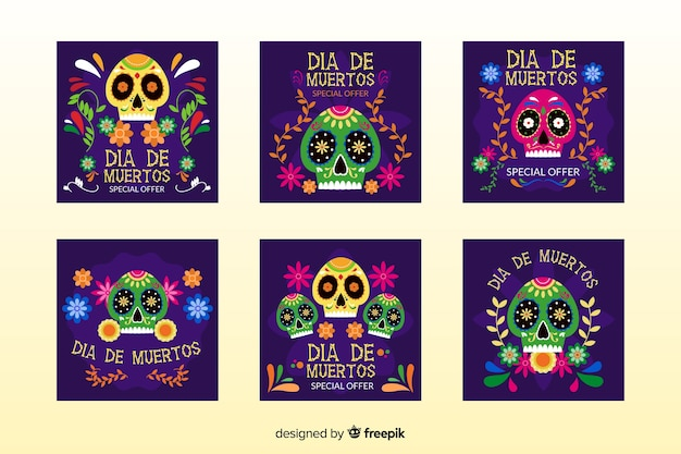 Day of the dead instagram post collection Free Vector
