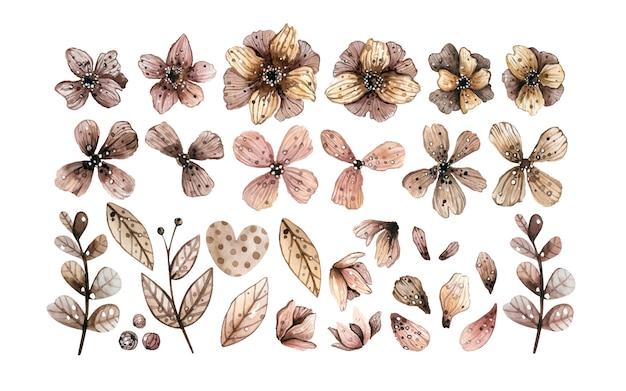 Decorative floral elements. Premium Vector