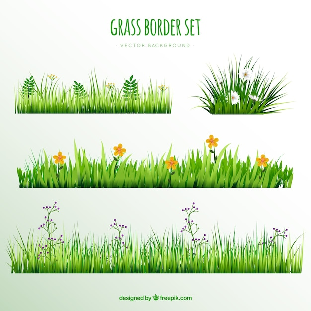 Decorative grass borders with pretty flowers Free Vector