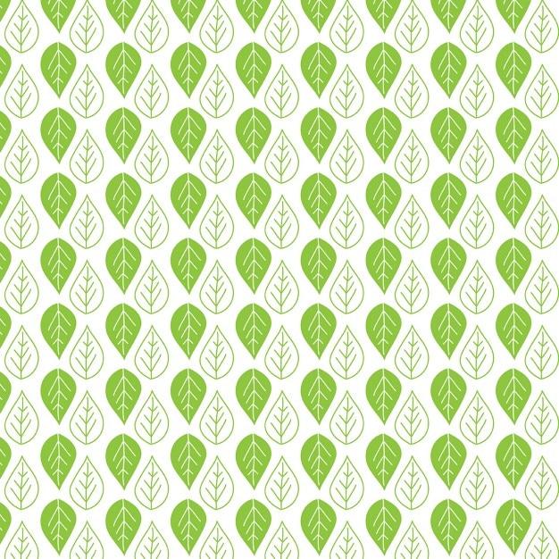 Decorative hand drawn leaf pattern