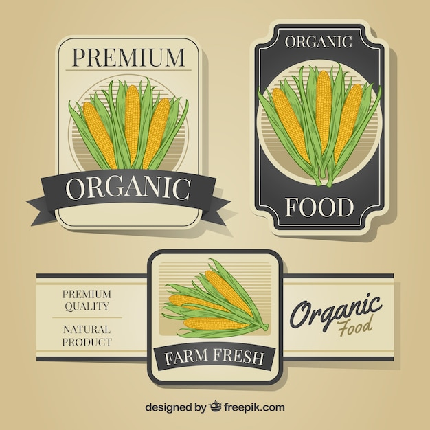 Decorative labels with corncobs Free Vector