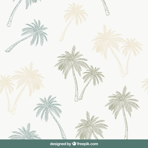 Decorative pattern with hand-drawn palm trees Free Vector