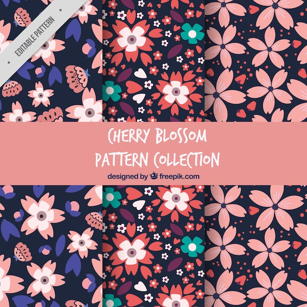 Decorative patterns of cherry blossoms Free Vector