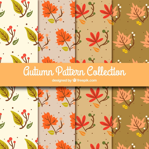 Decorative patterns of autumn leaves