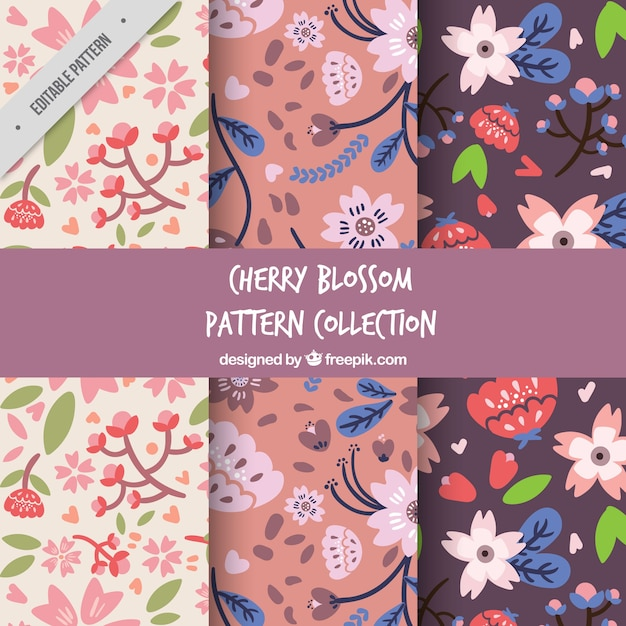 Decorative patterns set of cherry blossoms Free Vector