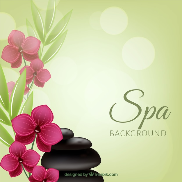 Decorative spa background Free Vector