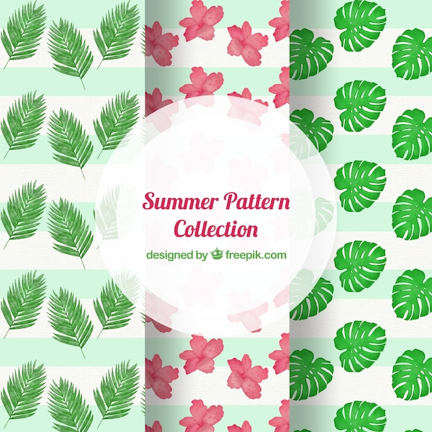 Decorative summer patterns with flowers and\ palm leaves