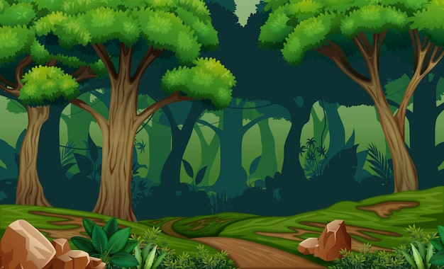 Deep forest scene with trail in the woods illustration Premium Vector