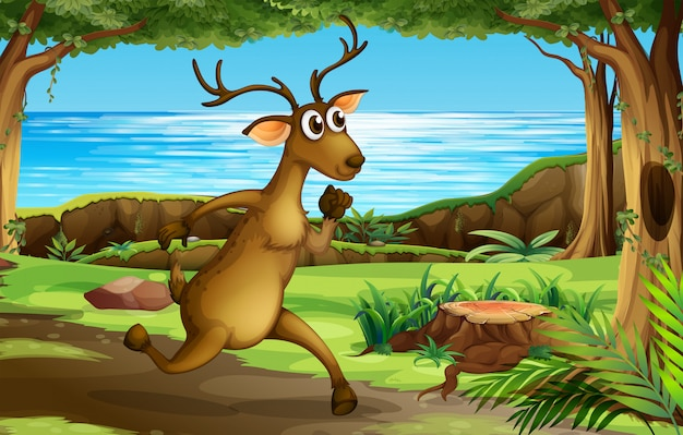A deer running in forest Free Vector