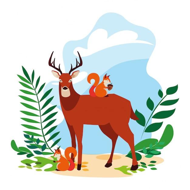Deer and squirrel happy autumn season Premium Vector