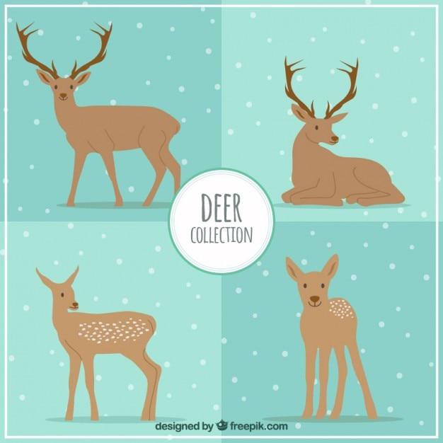 Deers collection Free Vector