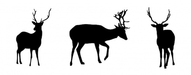 Deers silhouettes set isolated on white background Premium Vector