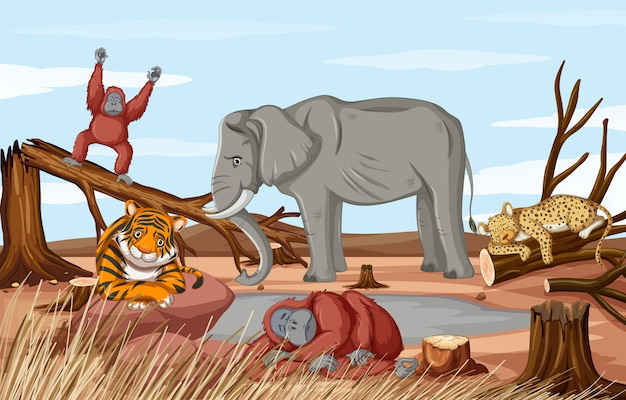 Deforestation scene with dying animals in drought Free Vector