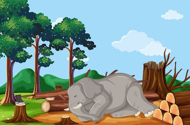 Deforestation scene with elephant dying Free Vector