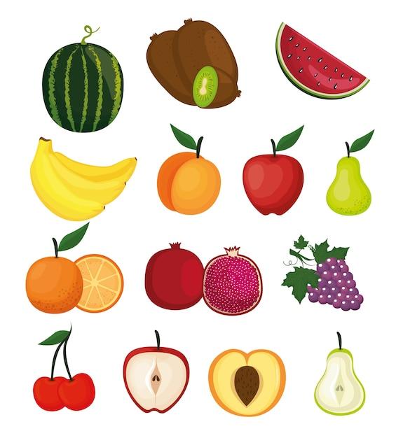 Delicious fruits healthy food vector illustration design Premium Vector