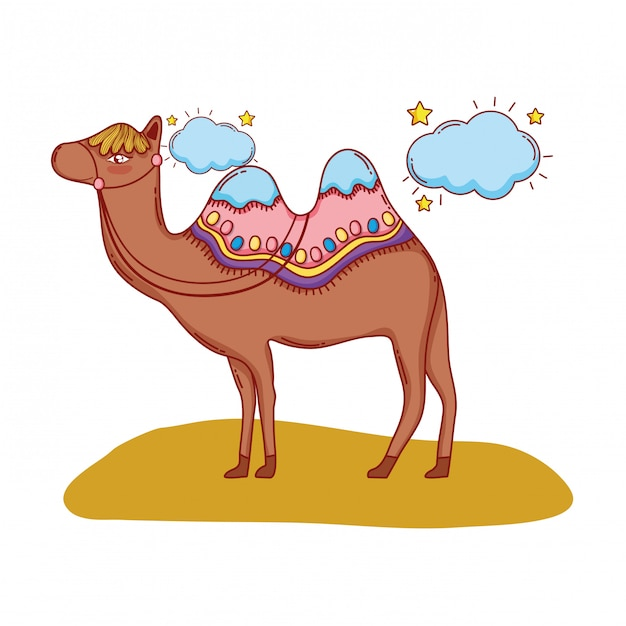 Desert camel cartoon Premium Vector