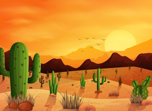 Desert landscape with cactus on the sunset background Premium Vector