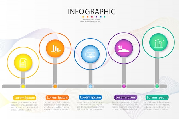 Design business template 5 options infographic chart element. Premium Vector