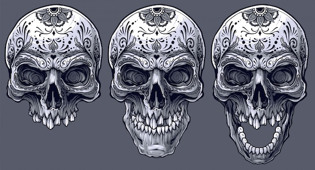 Detailed graphic black and white human skulls set Premium Vector