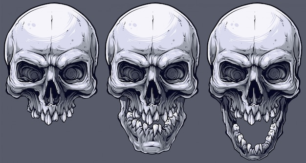 Detailed graphic black and white human skulls set Premium Vector